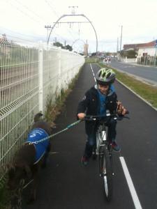 Maintenant il va à l'école sans crises et c'était pas gagné ! Mais bon c'est tellement marrant de faire du vélo avec farwest...