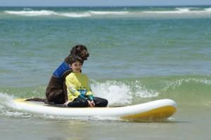 Du surf avec westy en plus sympa comme renforçateur!